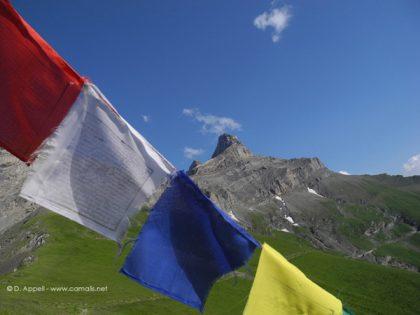 Les alpages du massif des Muverans.