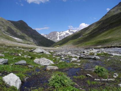Vallon de la Lombarde en Vanoise