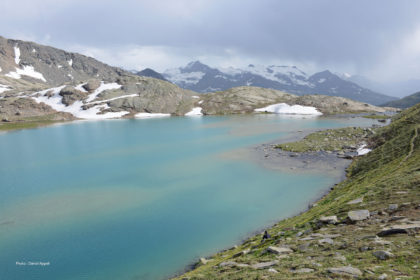 Randonnées acccompagnées dans les Alpes du nord : la Vanoise.