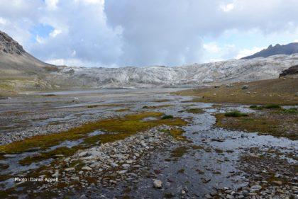 Vallée du WildHorn.jpg
