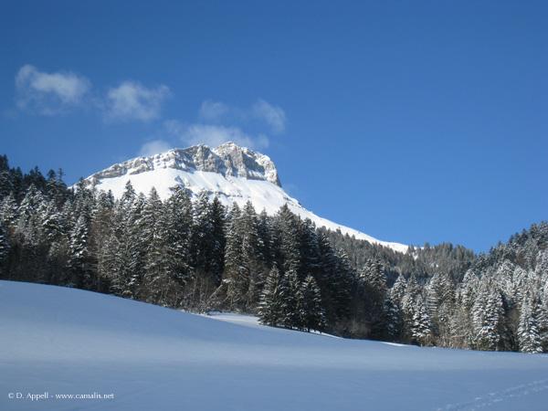 Le mont Colombier dans le massif des Bauges.