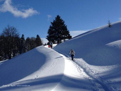 Randonnées accompagnées dans le massif des Bauges en hiver.